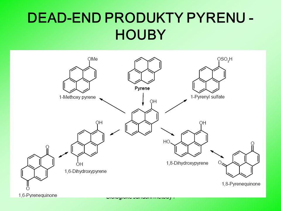 Biologické sanační metody I DEAD-END PRODUKTY PYRENU - HOUBY