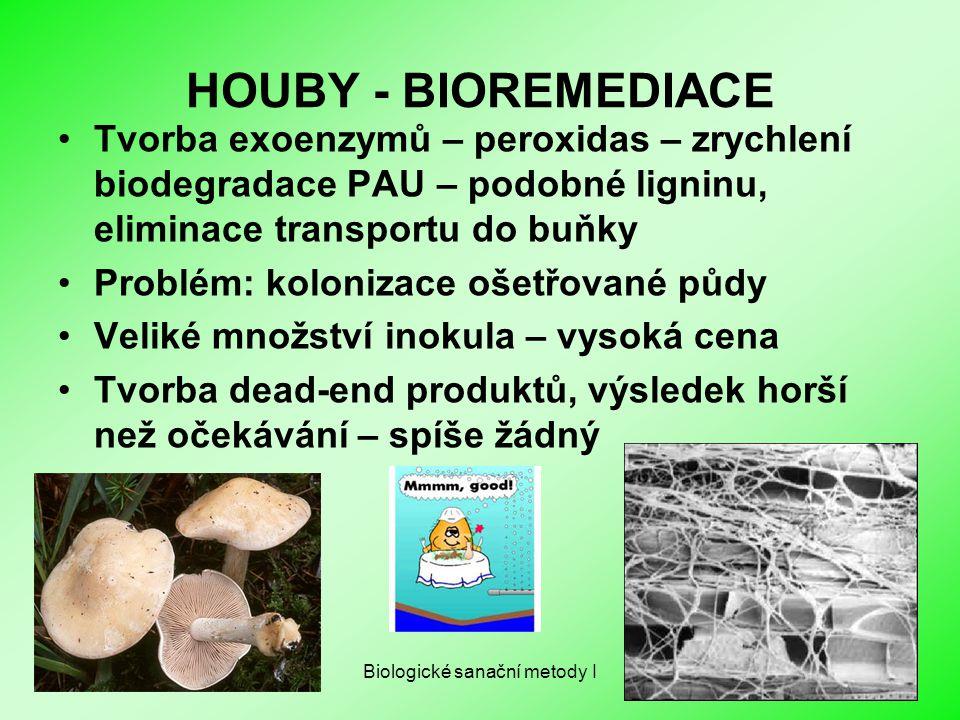 Biologické sanační metody I HOUBY - BIOREMEDIACE Tvorba exoenzymů – peroxidas – zrychlení biodegradace PAU – podobné ligninu, eliminace transportu do