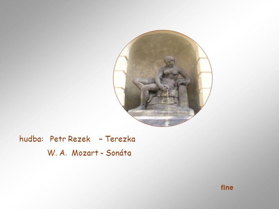 Křižíkova fontána je osvětlená a ozvučená fontána, která se nachází na pražském Výstavišti a využívá se především pro konání kulturních akcí. Fontánu