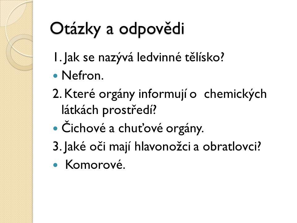 Otázky a odpovědi 1.Jak se nazývá ledvinné tělísko.