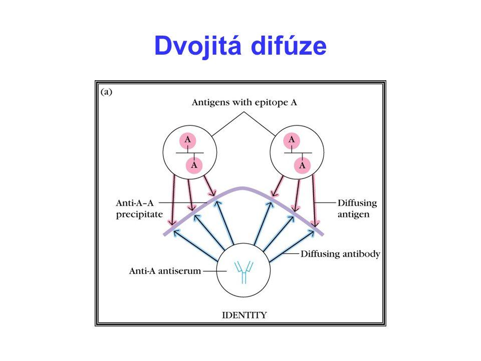 Dvojitá difúze