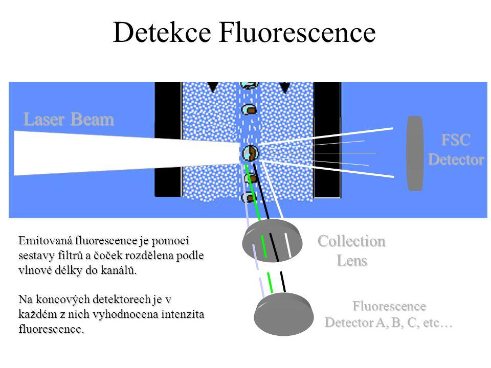Detekce Fluorescence FSC Detector CollectionLens Laser Beam Fluorescence Detector A, B, C, etc… Emitovaná fluorescence je pomocí sestavy filtrů a čoček rozdělena podle vlnové délky do kanálů.