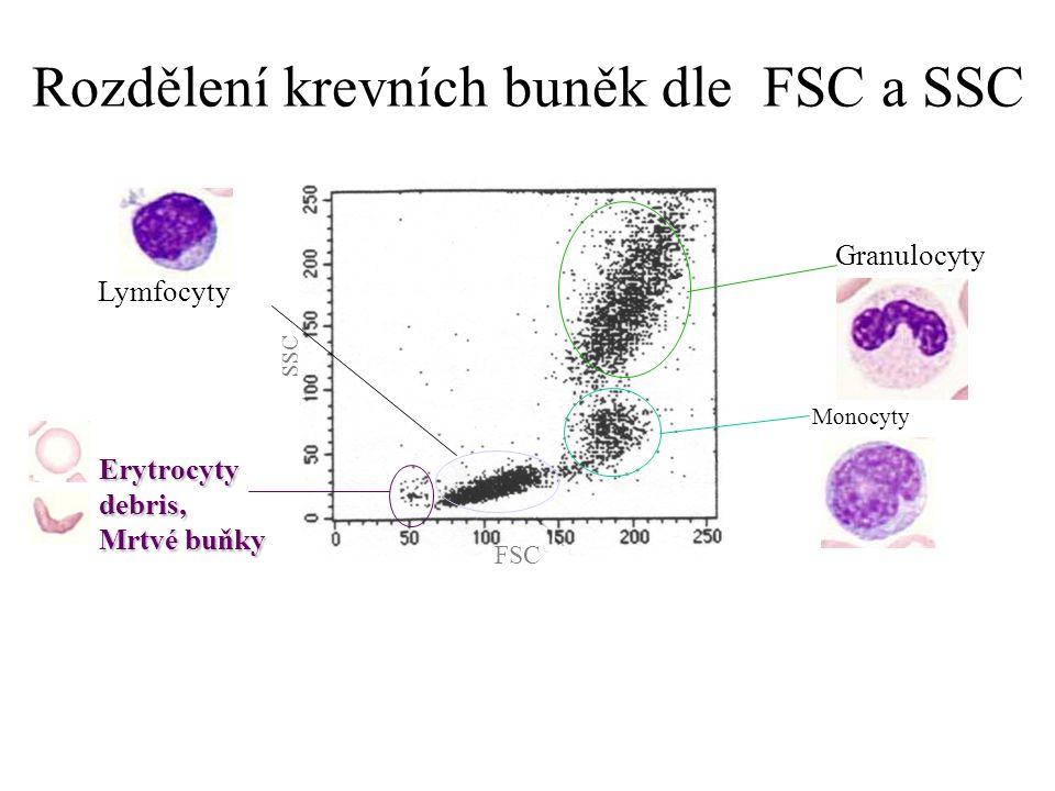 Rozdělení krevních buněk dle FSC a SSC FSC SSC Lymfocyty Monocyty Granulocyty Erytrocyty debris, Mrtvé buňky