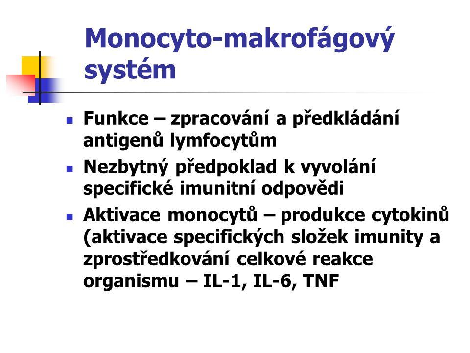 Monocyto-makrofágový systém Funkce – zpracování a předkládání antigenů lymfocytům Nezbytný předpoklad k vyvolání specifické imunitní odpovědi Aktivace