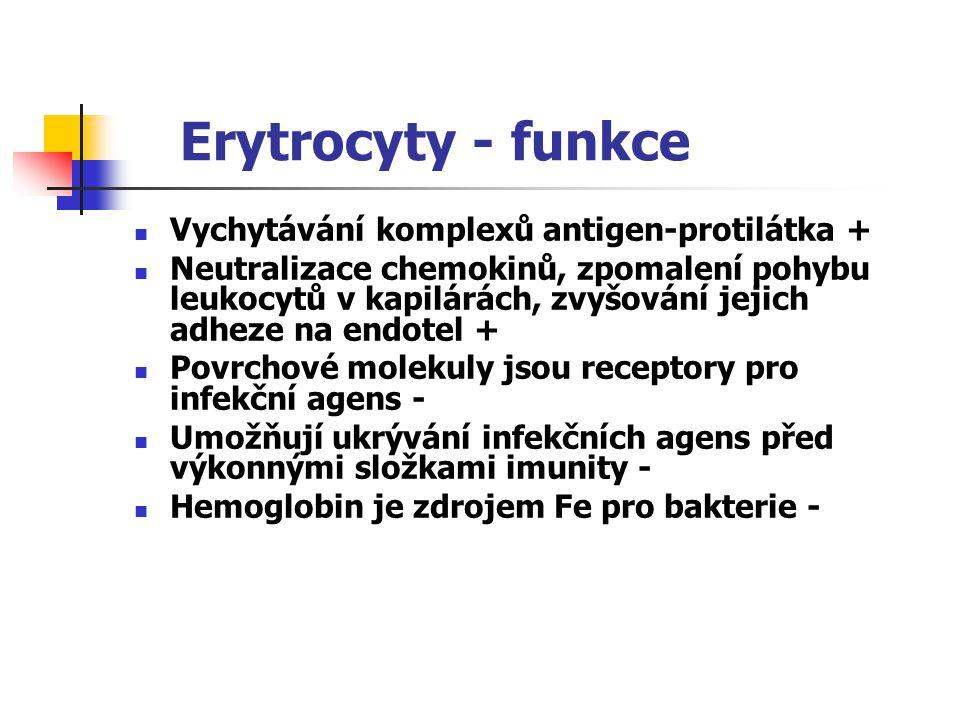 Erytrocyty - funkce Vychytávání komplexů antigen-protilátka + Neutralizace chemokinů, zpomalení pohybu leukocytů v kapilárách, zvyšování jejich adheze