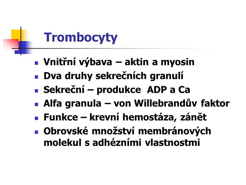 Trombocyty Vnitřní výbava – aktin a myosin Dva druhy sekrečních granulí Sekreční – produkce ADP a Ca Alfa granula – von Willebrandův faktor Funkce – k
