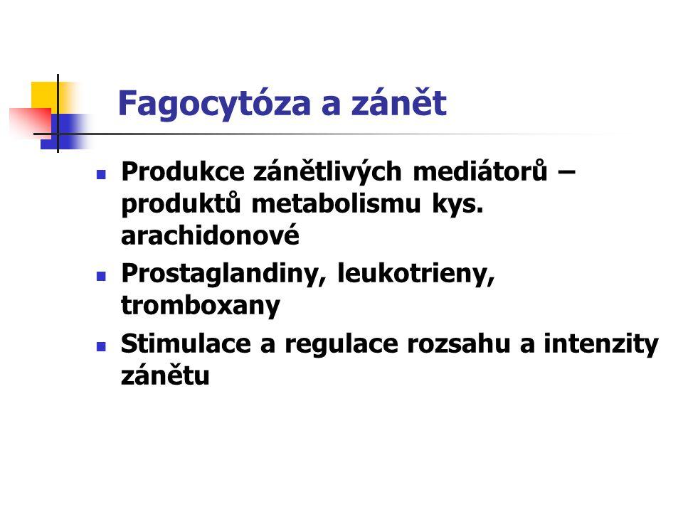 Fagocytóza a zánět Produkce zánětlivých mediátorů – produktů metabolismu kys. arachidonové Prostaglandiny, leukotrieny, tromboxany Stimulace a regulac