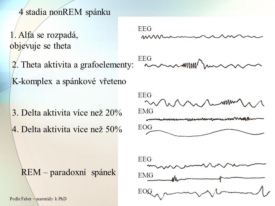 4 stadia nonREM spánku 1. Alfa se rozpadá, objevuje se theta 2. Theta aktivita a grafoelementy: K-komplex a spánkové vřeteno 3. Delta aktivita více ne