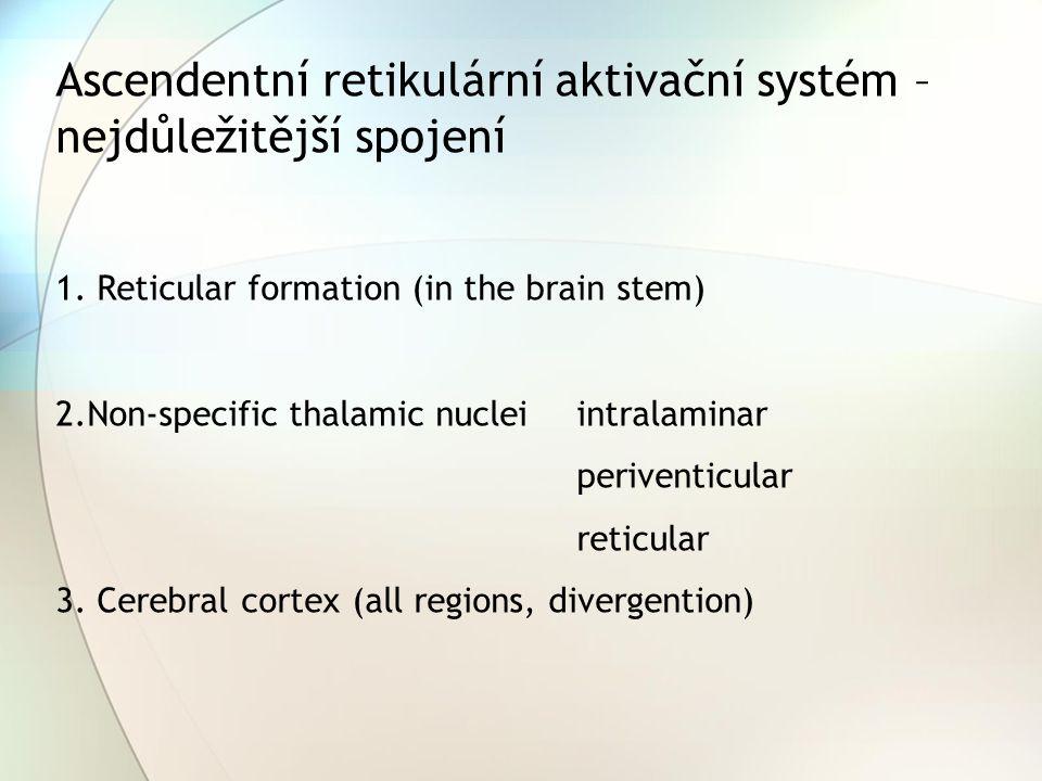 Ascendentní retikulární aktivační systém – nejdůležitější spojení 1. Reticular formation (in the brain stem) 2.Non-specific thalamic nuclei intralamin