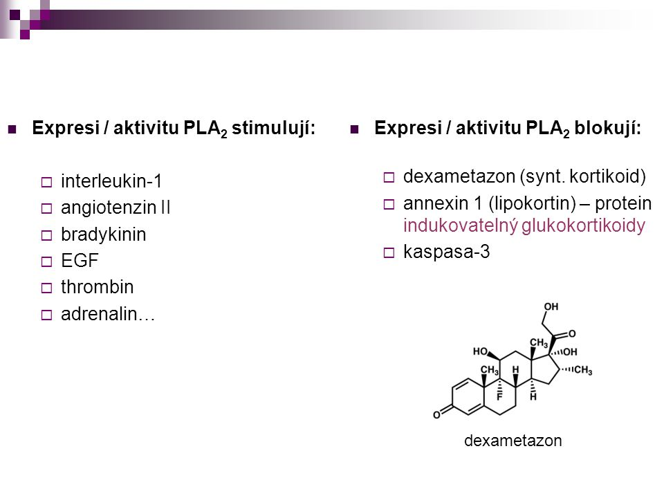 Expresi / aktivitu PLA 2 stimulují:  interleukin-1  angiotenzin II  bradykinin  EGF  thrombin  adrenalin… Expresi / aktivitu PLA 2 blokují:  de