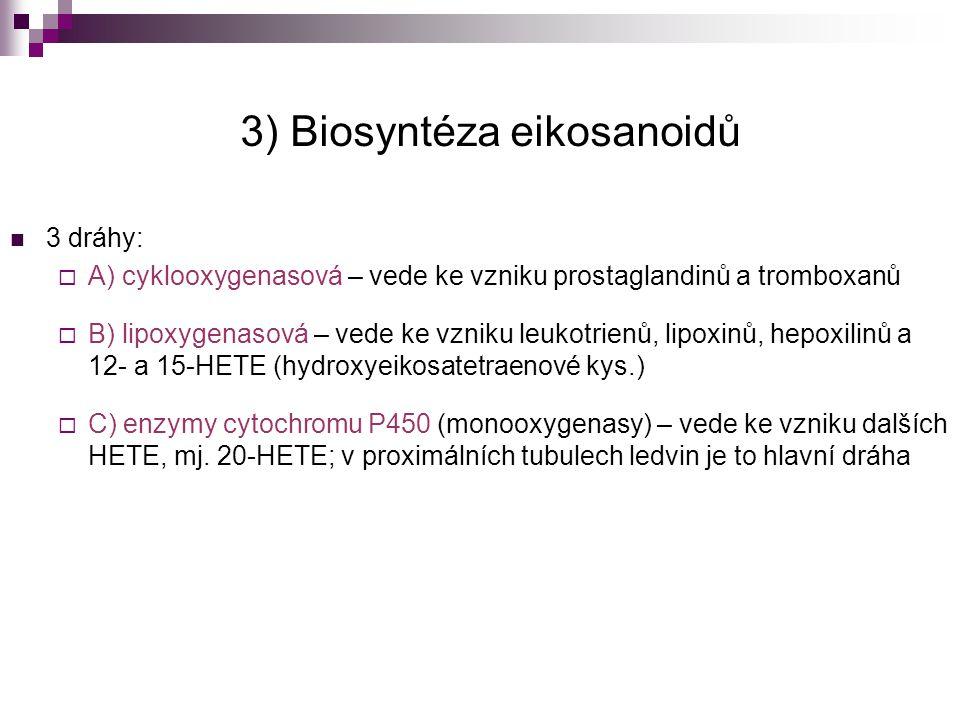 3) Biosyntéza eikosanoidů 3 dráhy:  A) cyklooxygenasová – vede ke vzniku prostaglandinů a tromboxanů  B) lipoxygenasová – vede ke vzniku leukotrienů
