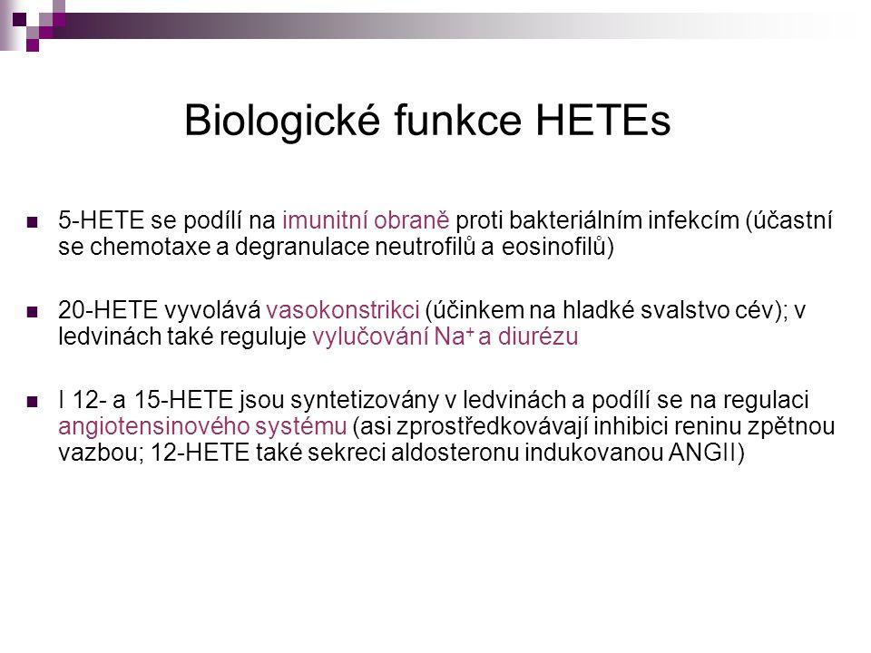 Biologické funkce HETEs 5-HETE se podílí na imunitní obraně proti bakteriálním infekcím (účastní se chemotaxe a degranulace neutrofilů a eosinofilů) 2