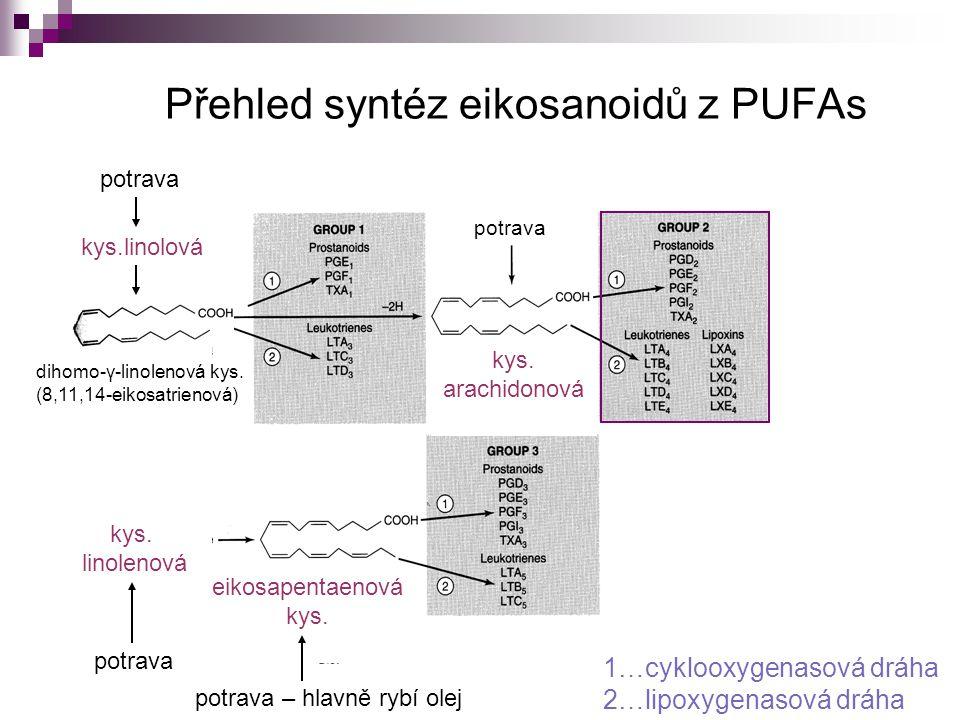 Přehled syntéz eikosanoidů z PUFAs potrava – hlavně rybí olej kys. linolenová potrava kys. arachidonová eikosapentaenová kys. kys.linolová potrava 1…c