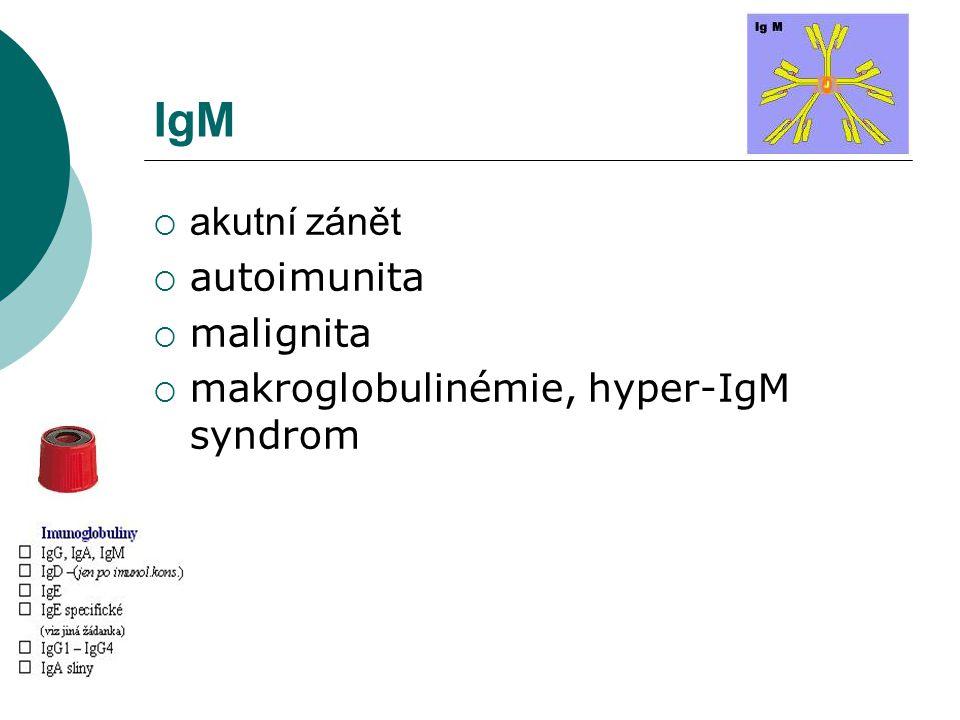 IgM  akutní zánět  autoimunita  malignita  makroglobulinémie, hyper-IgM syndrom