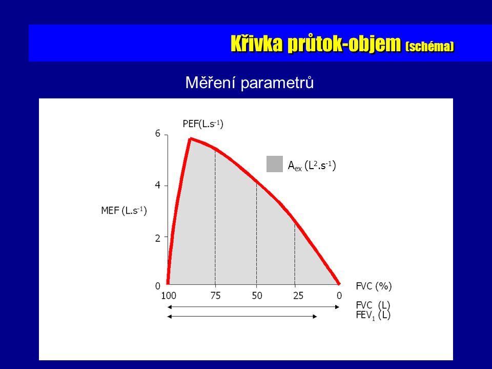 Křivka průtok-objem (schéma) A ex (L 2.s -1 ) Měření parametrů