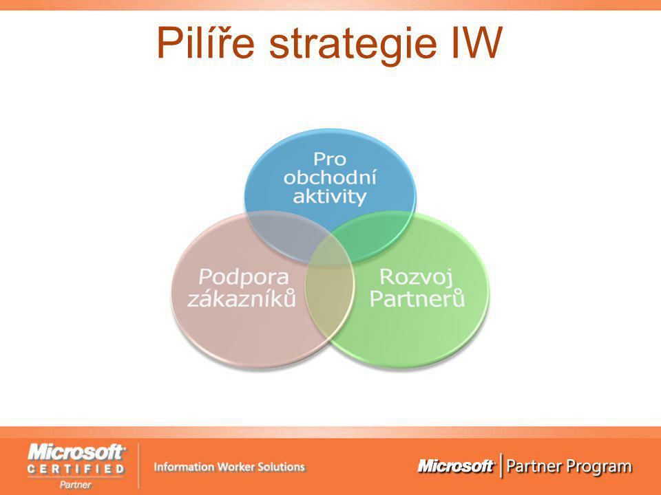 Pilíře strategie IW
