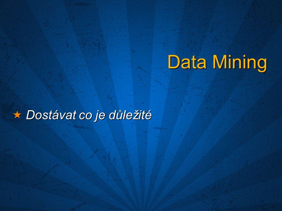 Data Mining  Dostávat co je důležité