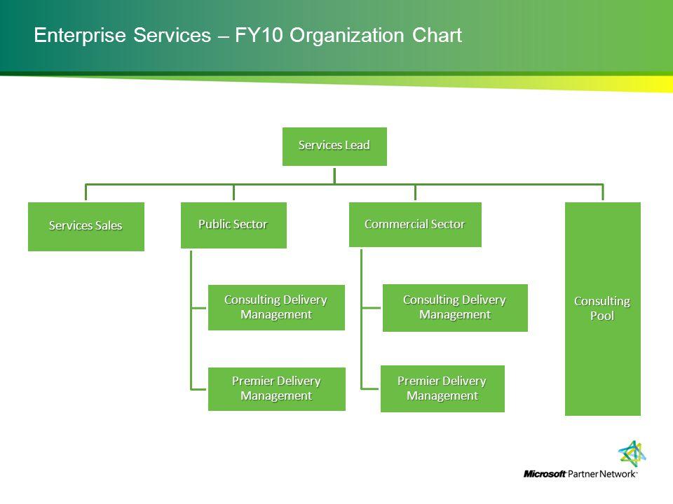 Enterprise Services – FY10 Organization Chart Services Lead Services Sales Public Sector Consulting Delivery Management Premier Delivery Management Co