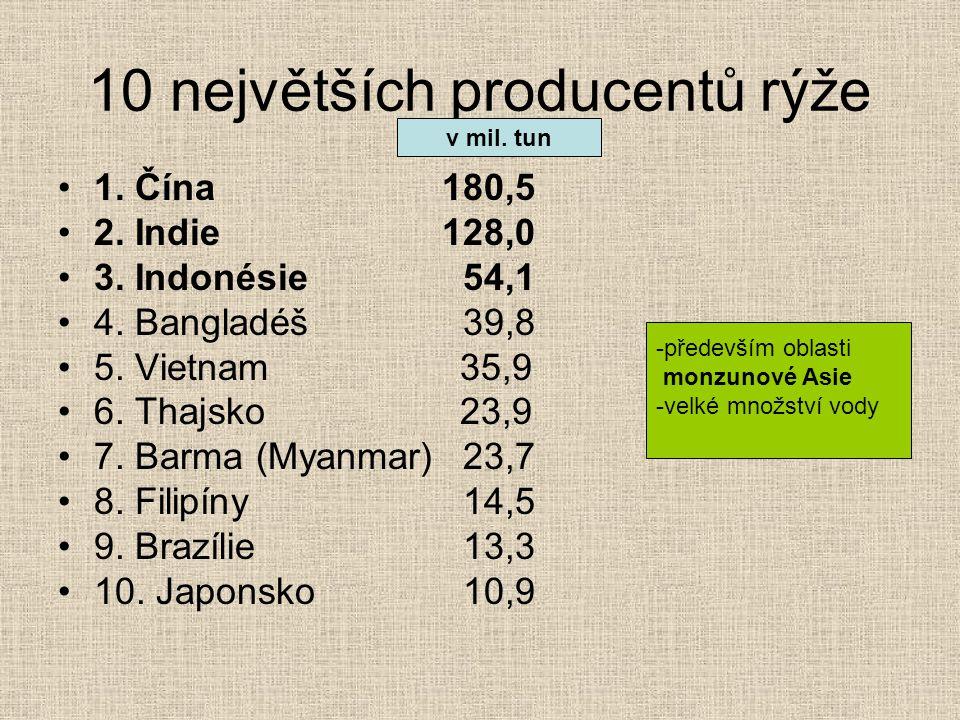 10 největších producentů rýže 1. Čína180,5 2. Indie128,0 3. Indonésie 54,1 4. Bangladéš 39,8 5. Vietnam 35,9 6. Thajsko 23,9 7. Barma (Myanmar) 23,7 8