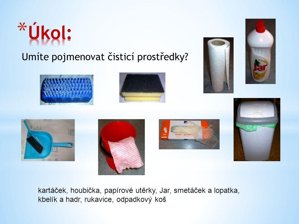 Umíte pojmenovat čisticí prostředky? kartáček, houbička, papírové utěrky, Jar, smetáček a lopatka, kbelík a hadr, rukavice, odpadkový koš