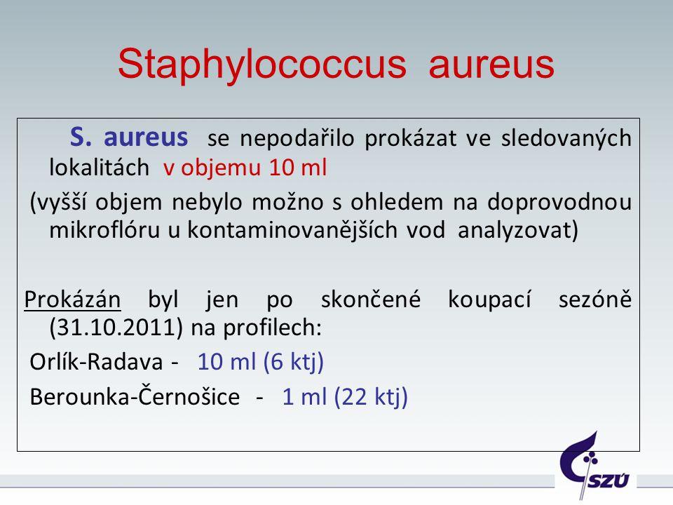 Staphylococcus aureus S. aureus se nepodařilo prokázat ve sledovaných lokalitách v objemu 10 ml (vyšší objem nebylo možno s ohledem na doprovodnou mik