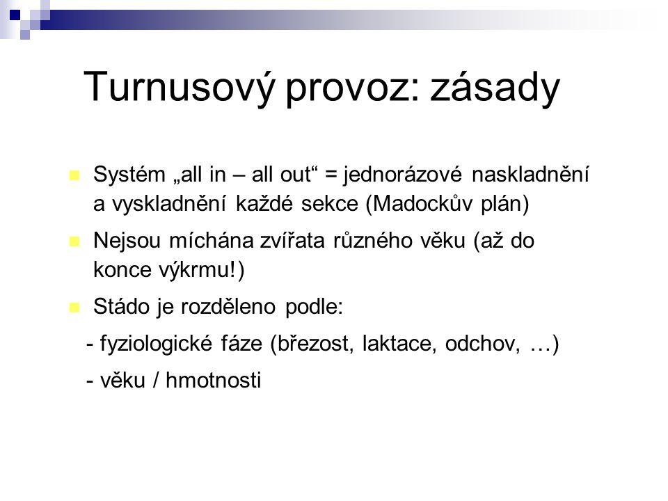 """Turnusový provoz: zásady Systém """"all in – all out"""" = jednorázové naskladnění a vyskladnění každé sekce (Madockův plán) Nejsou míchána zvířata různého"""