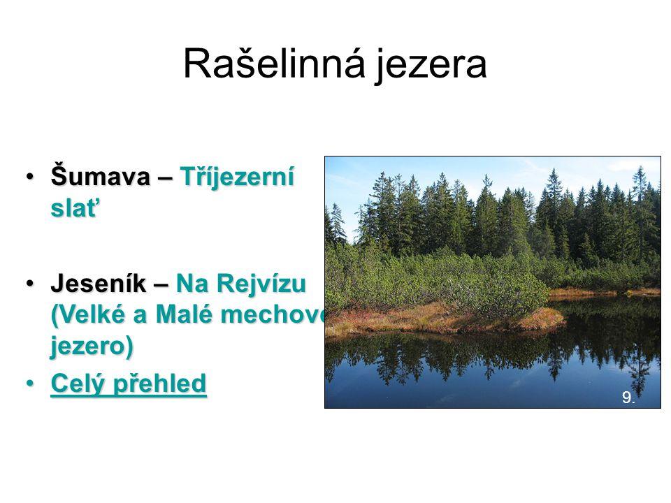 Rašelinná jezera Šumava – Tříjezerní slaťŠumava – Tříjezerní slať Jeseník – Na Rejvízu (Velké a Malé mechové jezero)Jeseník – Na Rejvízu (Velké a Malé