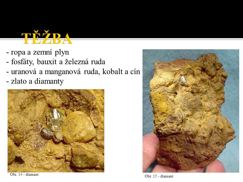 - ropa a zemní plyn - fosfáty, bauxit a železná ruda - uranová a manganová ruda, kobalt a cín - zlato a diamanty Obr.