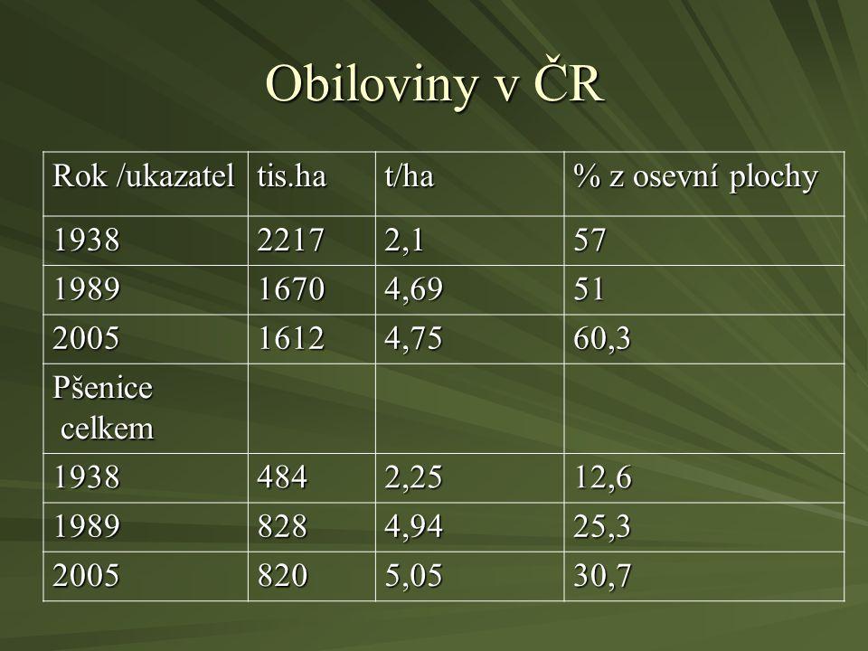 Obiloviny v ČR Rok /ukazatel tis.hat/ha % z osevní plochy 193822172,157 198916704,6951 200516124,7560,3 Pšenice celkem celkem 19384842,2512,6 19898284