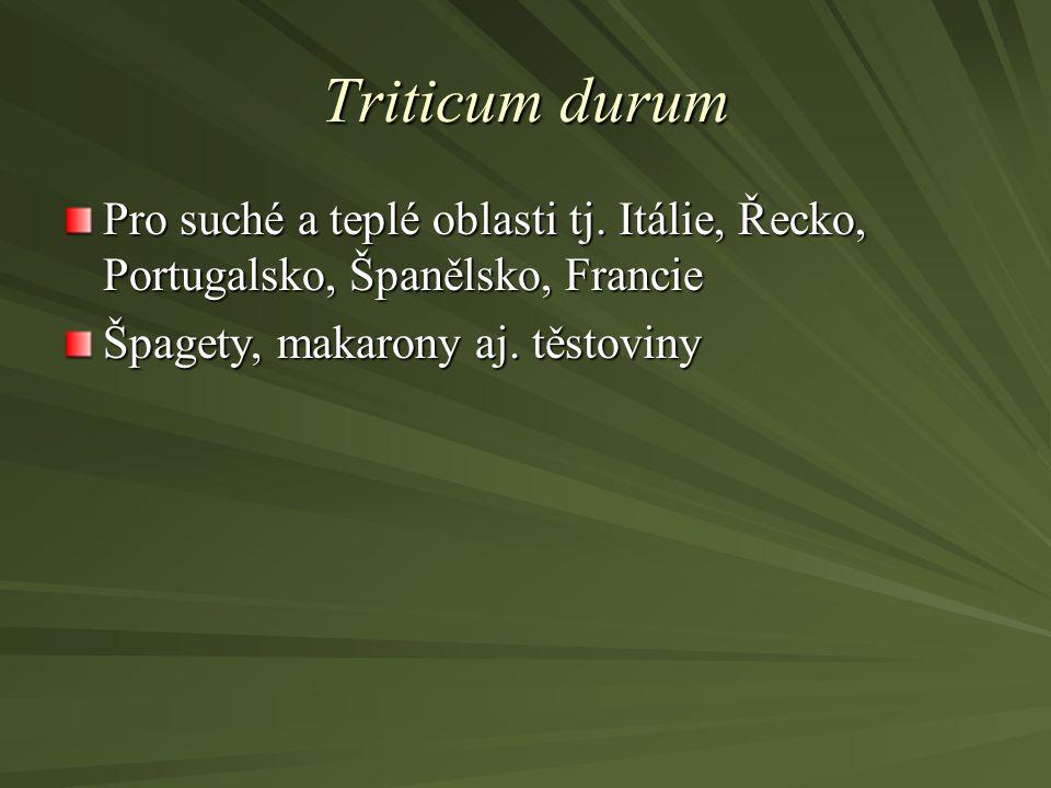 Triticum durum Pro suché a teplé oblasti tj. Itálie, Řecko, Portugalsko, Španělsko, Francie Špagety, makarony aj. těstoviny