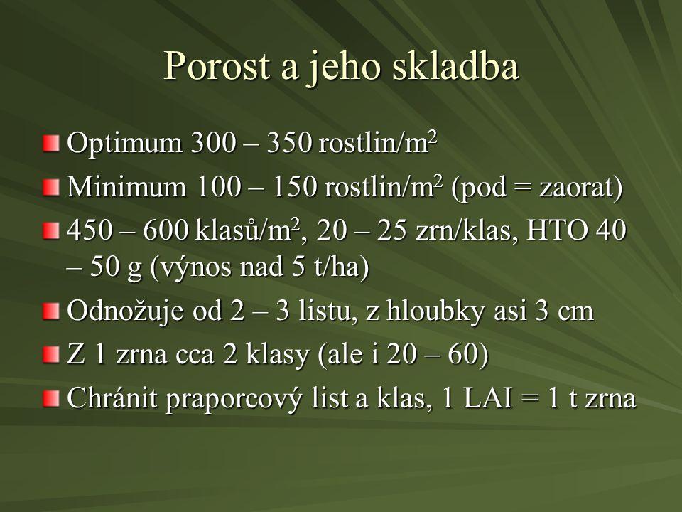 Porost a jeho skladba Optimum 300 – 350 rostlin/m 2 Minimum 100 – 150 rostlin/m 2 (pod = zaorat) 450 – 600 klasů/m 2, 20 – 25 zrn/klas, HTO 40 – 50 g