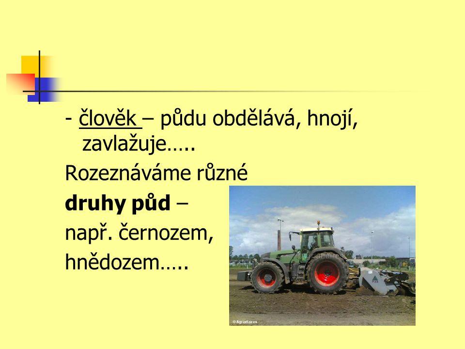 - člověk – půdu obdělává, hnojí, zavlažuje…..Rozeznáváme různé druhy půd – např.