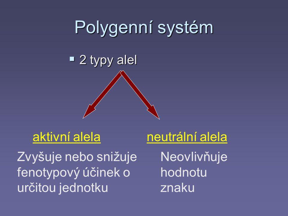 Polygenní systém  2 typy alel aktivní alelaneutrální alela Zvyšuje nebo snižuje fenotypový účinek o určitou jednotku Neovlivňuje hodnotu znaku