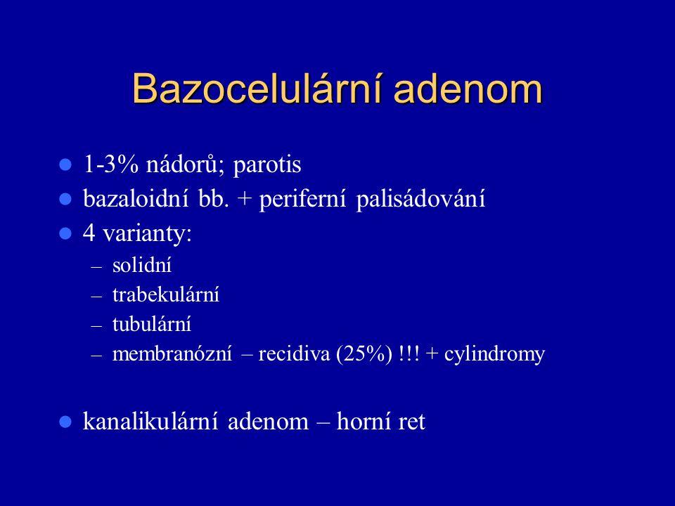 Bazocelulární adenom 1-3% nádorů; parotis bazaloidní bb. + periferní palisádování 4 varianty: – solidní – trabekulární – tubulární – membranózní – rec