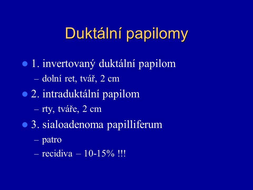 Duktální papilomy 1. invertovaný duktální papilom – dolní ret, tvář, 2 cm 2. intraduktální papilom – rty, tváře, 2 cm 3. sialoadenoma papilliferum – p