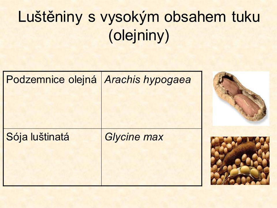 Luštěniny s vysokým obsahem tuku (olejniny) Podzemnice olejnáArachis hypogaea Sója luštinatáGlycine max