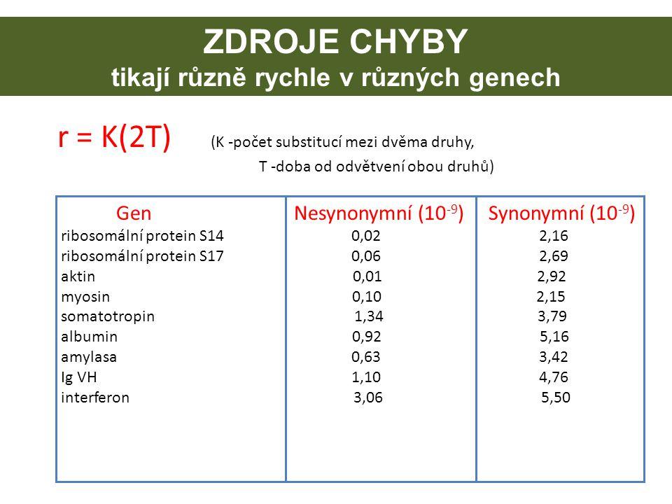 ZDROJE CHYBY tikají různě rychle v různých genech r = K(2T) (K -počet substitucí mezi dvěma druhy, T -doba od odvětvení obou druhů) Gen Nesynonymní (1