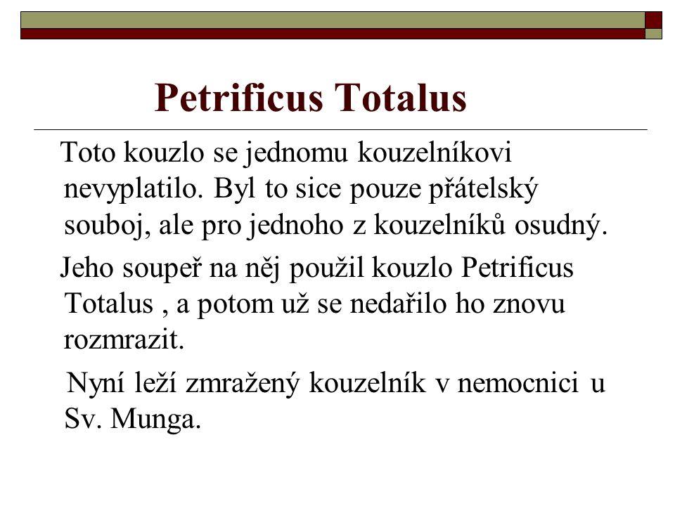 Petrificus Totalus Toto kouzlo se jednomu kouzelníkovi nevyplatilo. Byl to sice pouze přátelský souboj, ale pro jednoho z kouzelníků osudný. Jeho soup