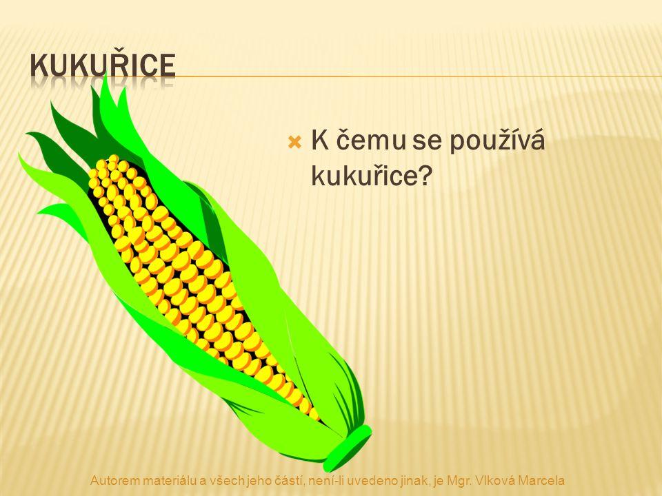  K čemu se používá kukuřice? Autorem materiálu a všech jeho částí, není-li uvedeno jinak, je Mgr. Vlková Marcela