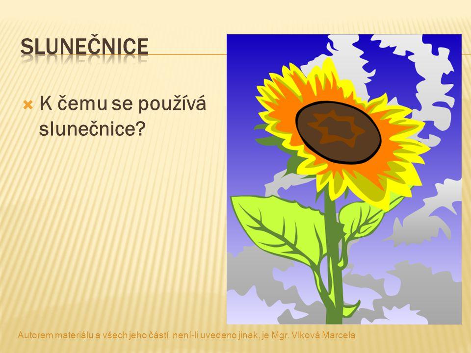  K čemu se používá slunečnice? Autorem materiálu a všech jeho částí, není-li uvedeno jinak, je Mgr. Vlková Marcela
