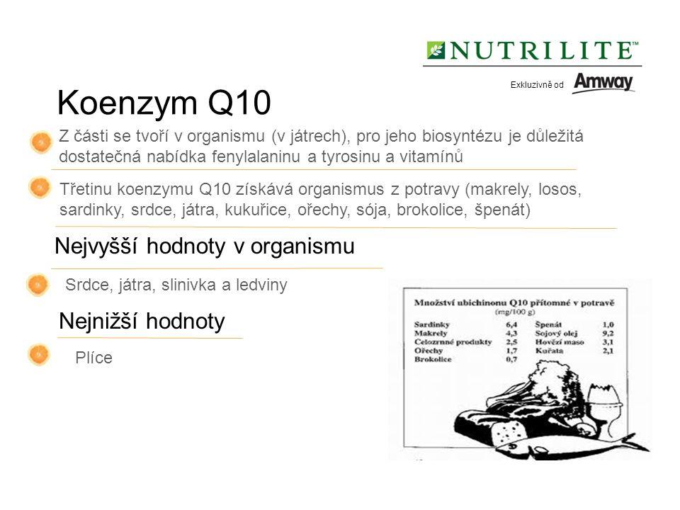 Nejnižší hodnoty Třetinu koenzymu Q10 získává organismus z potravy (makrely, losos, sardinky, srdce, játra, kukuřice, ořechy, sója, brokolice, špenát) Z části se tvoří v organismu (v játrech), pro jeho biosyntézu je důležitá dostatečná nabídka fenylalaninu a tyrosinu a vitamínů Nejvyšší hodnoty v organismu Srdce, játra, slinivka a ledviny Plíce Koenzym Q10 Exkluzivně od