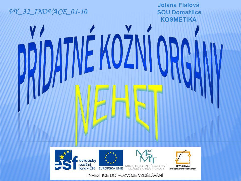 VY_32_INOVACE_01-10 Jolana Fialová SOU Domažlice KOSMETIKA
