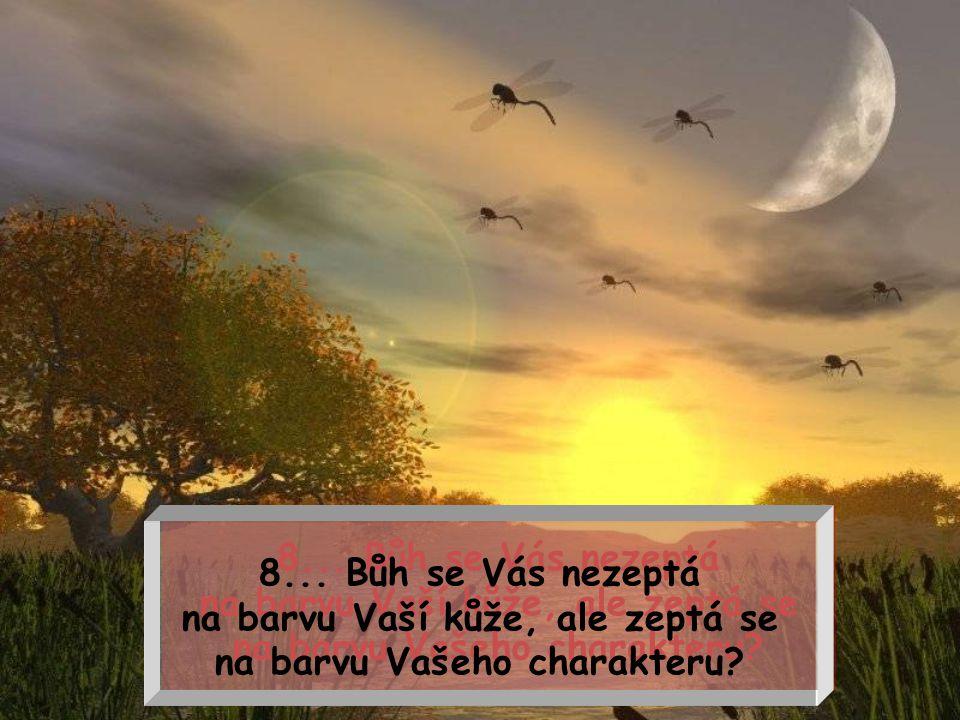8...Bůh se Vás nezeptá na barvu Vaší kůže, ale zeptá se na barvu Vašeho charakteru.