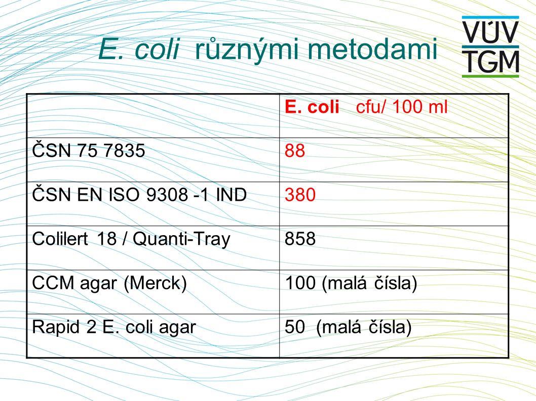 E.coli různými metodami E.