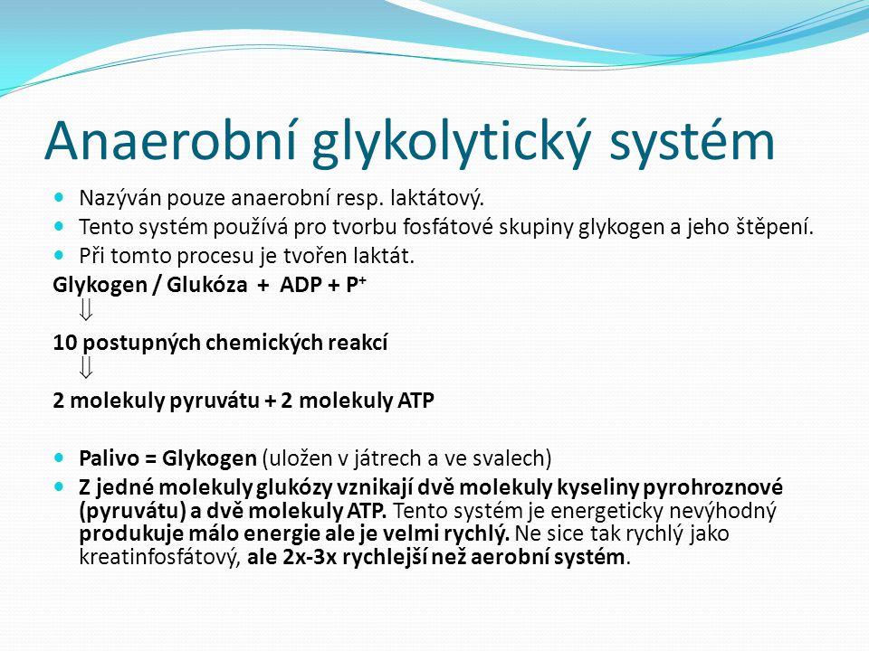 Anaerobní glykolytický systém Nazýván pouze anaerobní resp. laktátový. Tento systém používá pro tvorbu fosfátové skupiny glykogen a jeho štěpení. Při