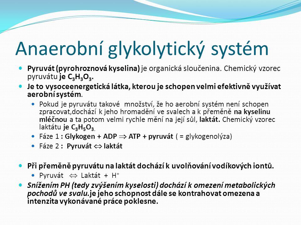 Anaerobní glykolytický systém Pyruvát (pyrohroznová kyselina) je organická sloučenina. Chemický vzorec pyruvátu je C 3 H 3 O 3. Je to vysoceenergetick