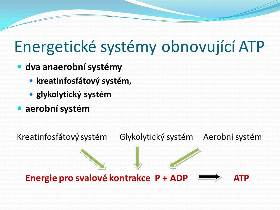 Energetické systémy obnovující ATP dva anaerobní systémy kreatinfosfátový systém, glykolytický systém aerobní systém Kreatinfosfátový systém Glykolytický systém Aerobní systém Energie pro svalové kontrakce P + ADP ATP
