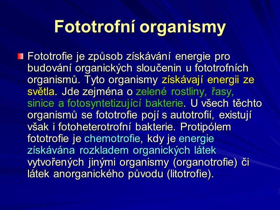 Fototrofní organismy Fototrofie je způsob získávání energie pro budování organických sloučenin u fototrofních organismů. Tyto organismy získávají ener