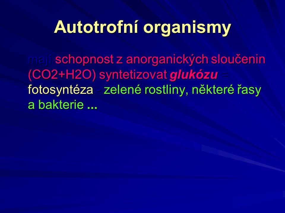 Autotrofní organismy mají schopnost z anorganických sloučenin (CO2+H2O) syntetizovat glukózu = fotosyntéza - zelené rostliny, některé řasy a bakterie.