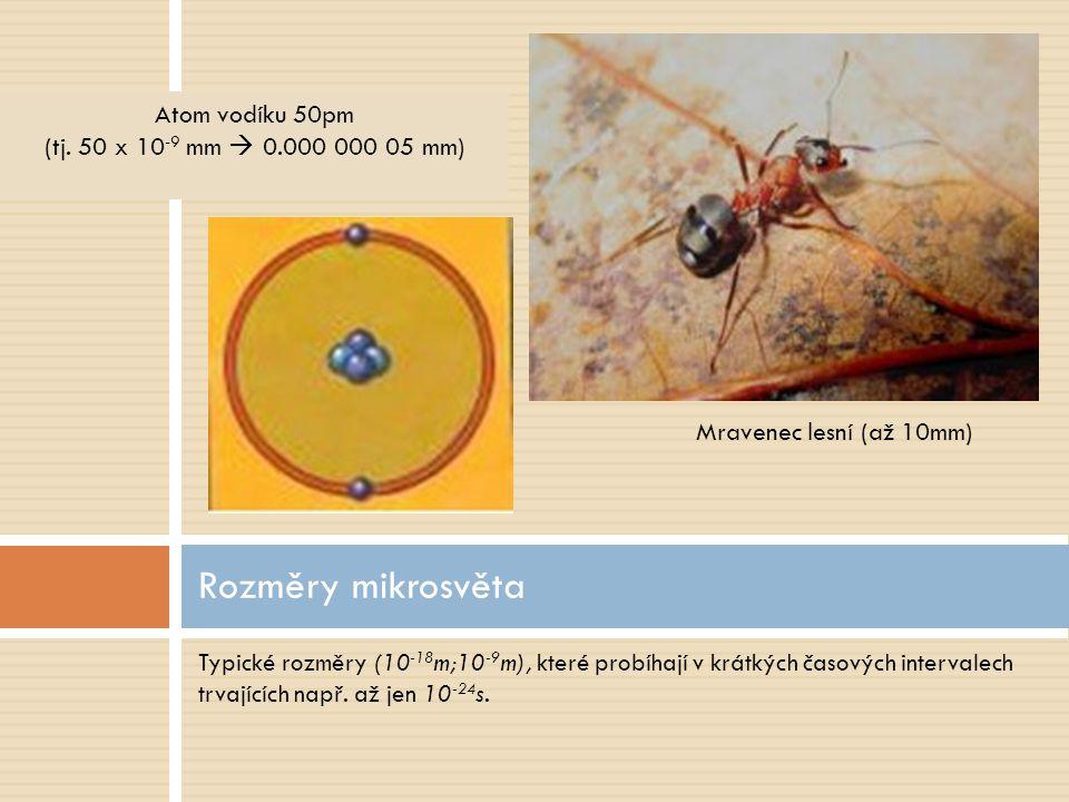 Typické rozměry (10 -18 m;10 -9 m), které probíhají v krátkých časových intervalech trvajících např. až jen 10 -24 s. Rozměry mikrosvěta Mravenec lesn